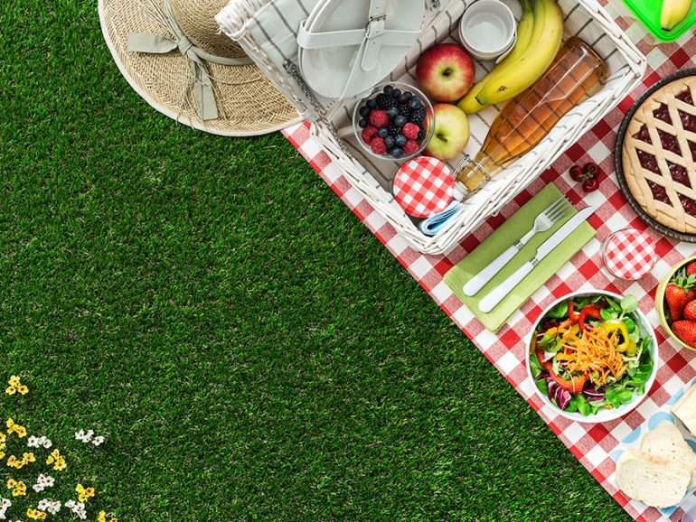 dia_mundial_del_picnic-770x578